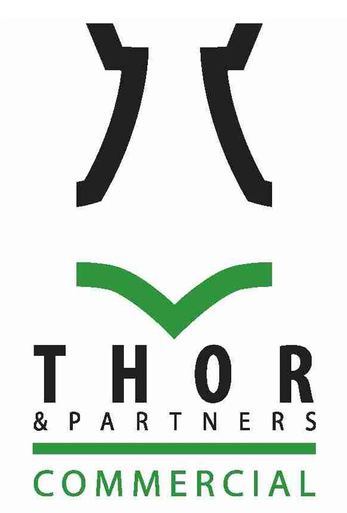 Home Page 2 Thor And Partners
